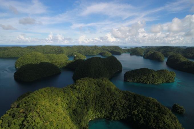 Film Palau